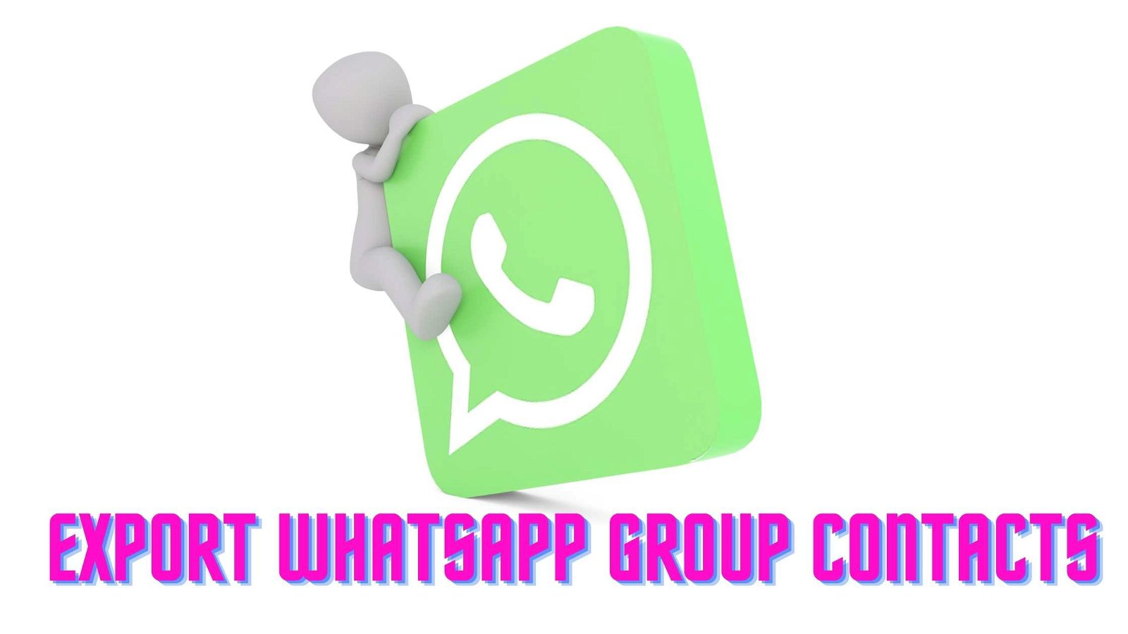 How To Export WhatsApp Group Contacts